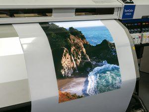 Backlit, Press Products, Film, Print Media
