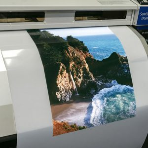 Backlit, Press Products, Film, Print Media